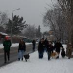 2014-12-31 Wanderung OG Pillnitz002