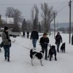 2014-12-31 Wanderung OG Pillnitz006