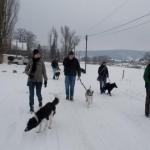 2014-12-31 Wanderung OG Pillnitz007