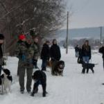 2014-12-31 Wanderung OG Pillnitz009