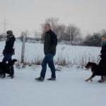 2014-12-31 Wanderung OG Pillnitz012