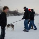 2014-12-31 Wanderung OG Pillnitz013