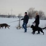 2014-12-31 Wanderung OG Pillnitz014