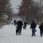 2014-12-31 Wanderung OG Pillnitz016