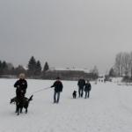 2014-12-31 Wanderung OG Pillnitz017