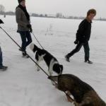 2014-12-31 Wanderung OG Pillnitz018