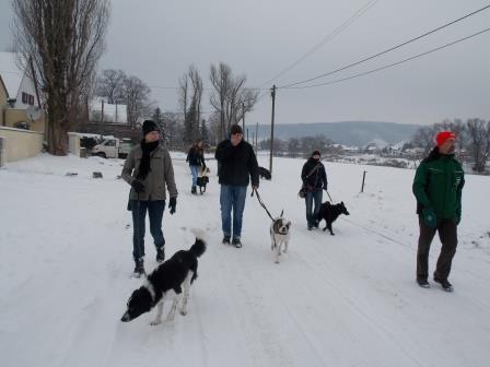 Wanderung OG Pillnitz007