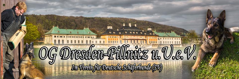 Hundesport Dresden Pillnitz
